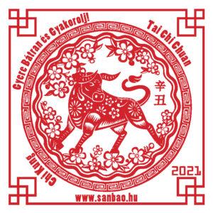 Yin-Fem-Bivaly-1-Yin-Fold-2021-SanBao-TaiChi-ChiKung-NeiKung.jpg