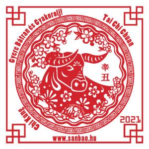 Yin-Fem-Bivaly-2-Yin-Fold-2021-SanBao-TaiChi-ChiKung-NeiKung.jpg