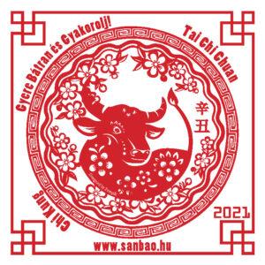 Yin-Fem-Bivaly-3-Yin-Fold-2021-SanBao-TaiChi-ChiKung-NeiKung.jpg